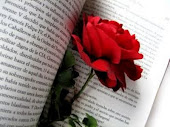 Poesia - O pedido do Poema