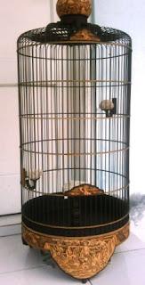 sangkar burung 2011-2012