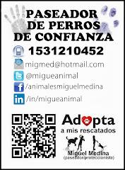 Miguel Medina. Paseador de perros. Zona norte. San Isidro