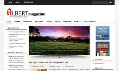 Albert WordPress Theme