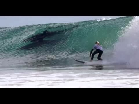Dolphins Join In California Surf Competition