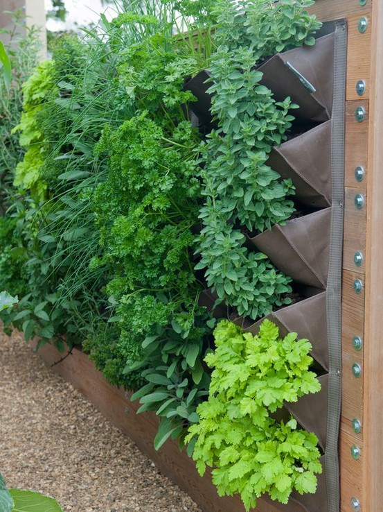 follow everyday Vertical Garden Metal planters create a