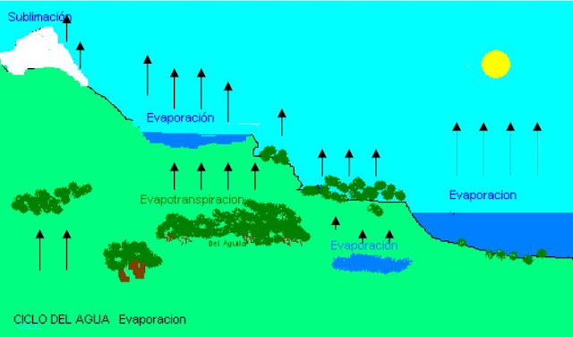 ciclo del agua evaporacion