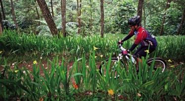 Lomba Menulis Kisah Perjalanan Bersepeda