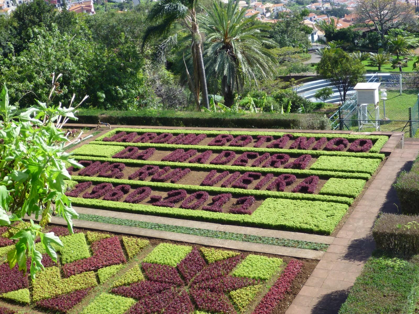 Delos 31 visite du jardin botanique de funchal for Bal des citrouilles jardin botanique