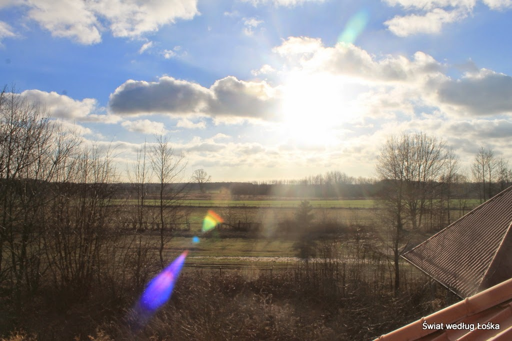 słońce, zima, ładna pogoda