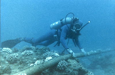 plongeur avec cable sous marin هل يمكنك تدمير شبكة الانترنت في العالم !