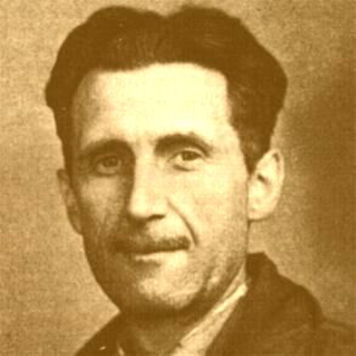 an analysis of totalitarianism in animal farm by george orwell Animal farm reverts to the old manor farm in both name and reality no doubt this is what george orwell thinks has happened in russia but if he wants to tell us why it happened, he has failed.