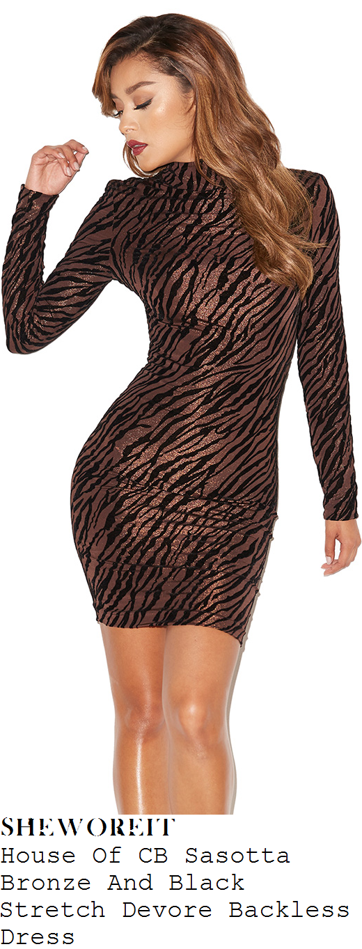 denise-van-outen-brown-bronze-black-tiger-print-long-sleeve-bodycon-mini-dress-kimberley-walsh-hen-party