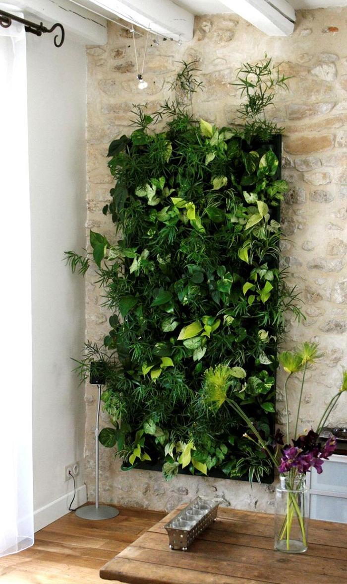 tips-deco-5-maneras-decorar-con-plantas