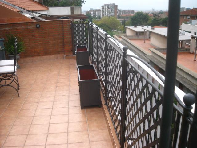 Taller maren forja celosia en barcelona for Celosia terraza