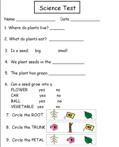 Worksheets Science Worksheets First Grade science worksheets first grade plants delwfg com autism tank unit grade