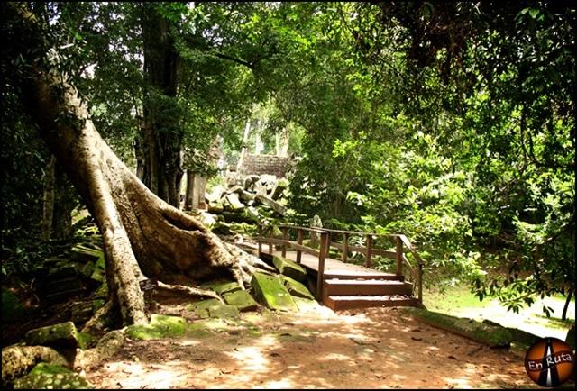 Ta-Prohm-Templos-de-Angkor_1