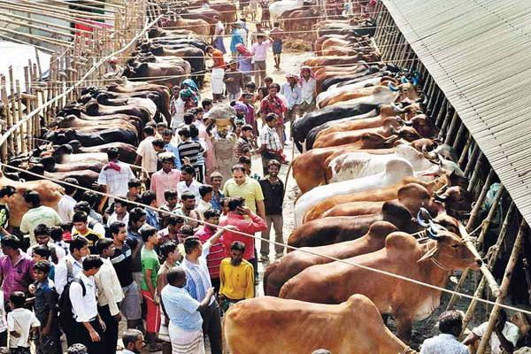 Dhaka Eid Ul Adha Holidays 2011