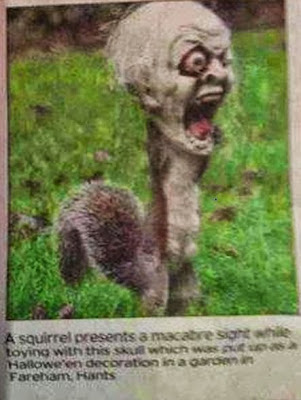 squirrel with zombie head