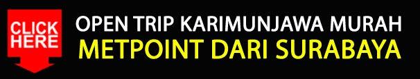 OPEN TRIP KARIMUNJAWA MURAH METPOINT DARI SURABAYA