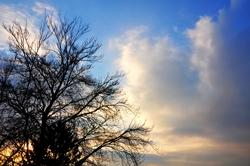 Leuchtwolken...