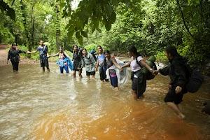 Human chain crossing water stream, Dudhsagar water falls trekking
