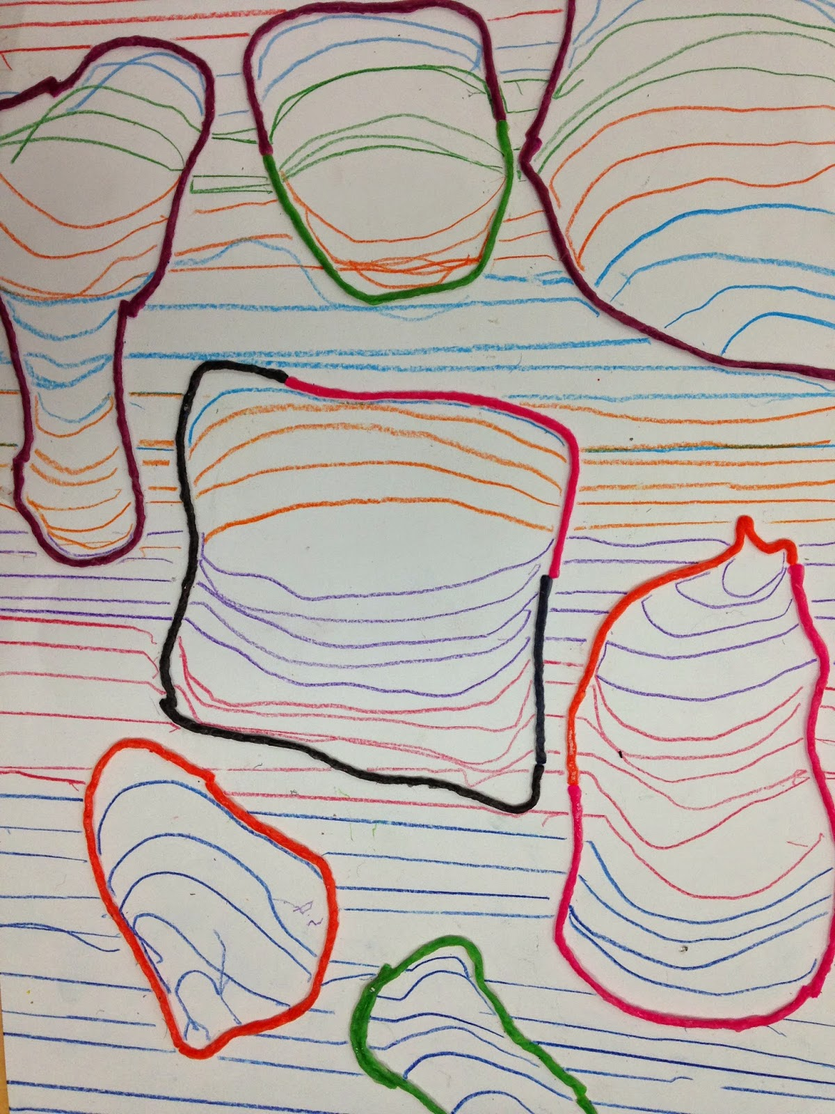 Made curves inside the shapes to create their cross contour drawings