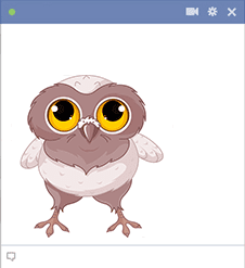 Owl Facebook Sticker