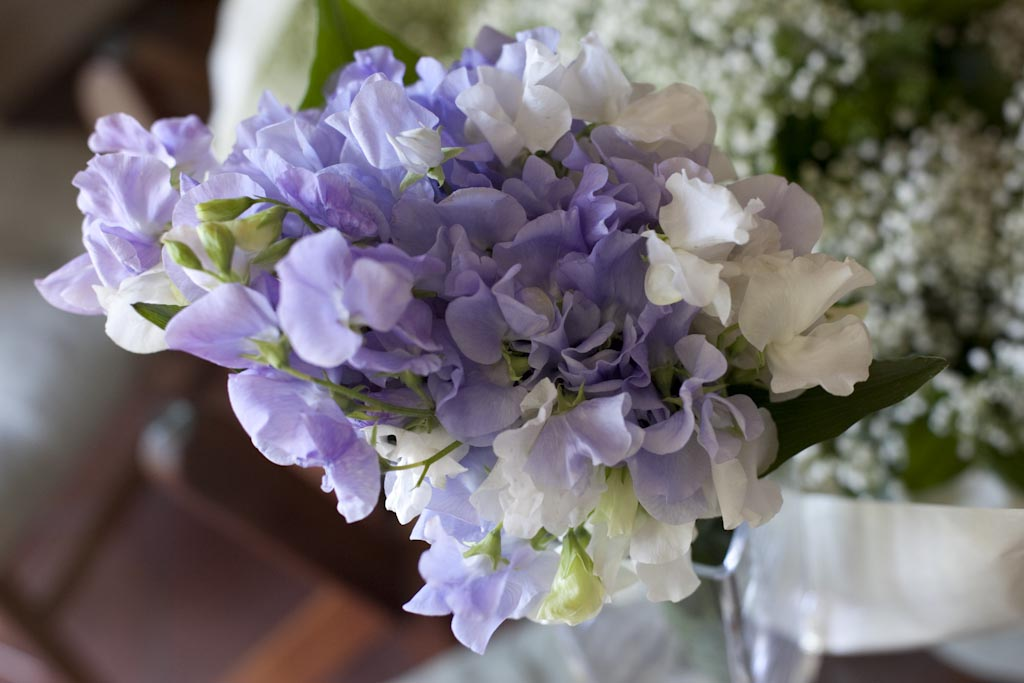 Matrimonio Tema Lilla : Il giardino sfumato matrimonio bianco lilla