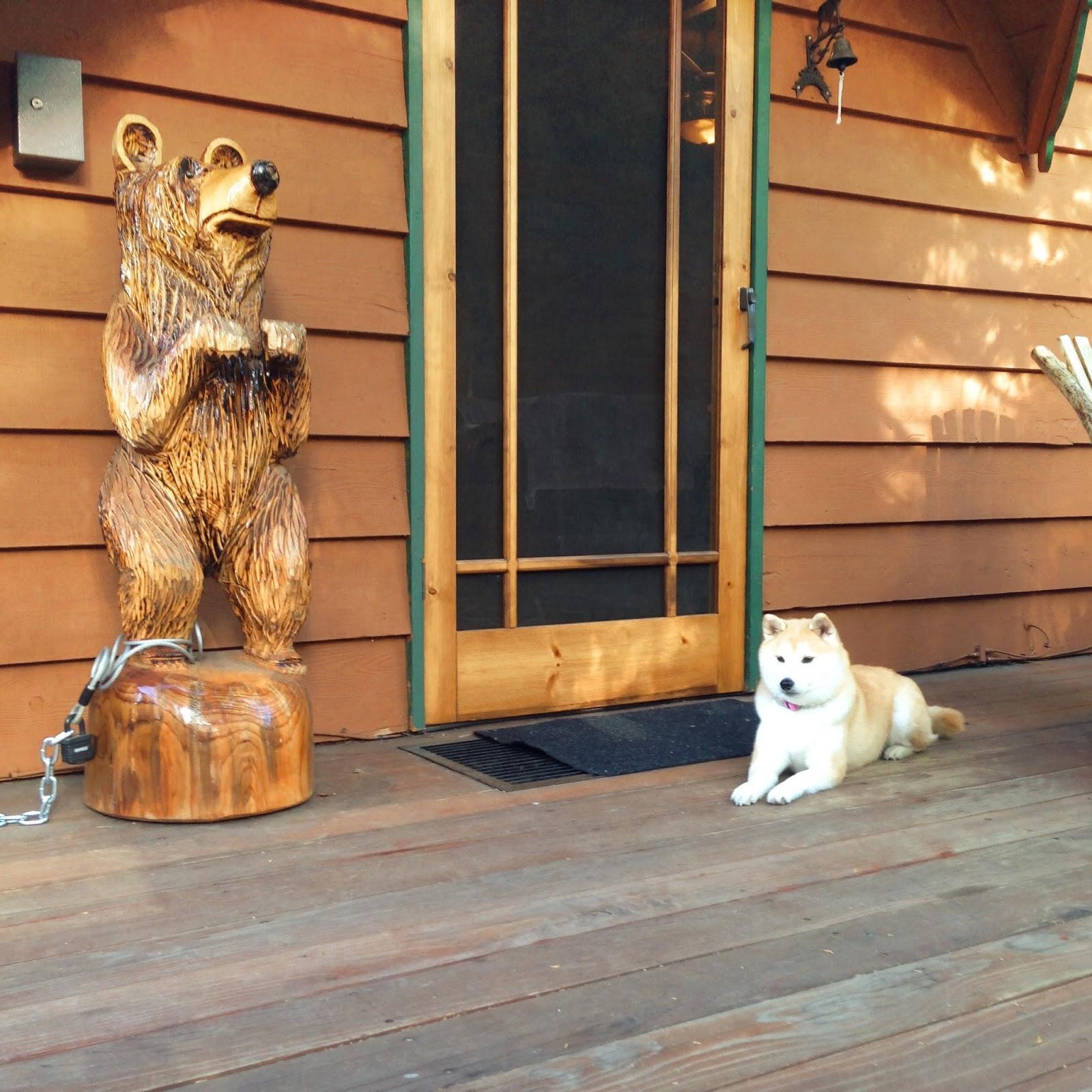 Big Bear Manor Spa Cabins Coupon Code