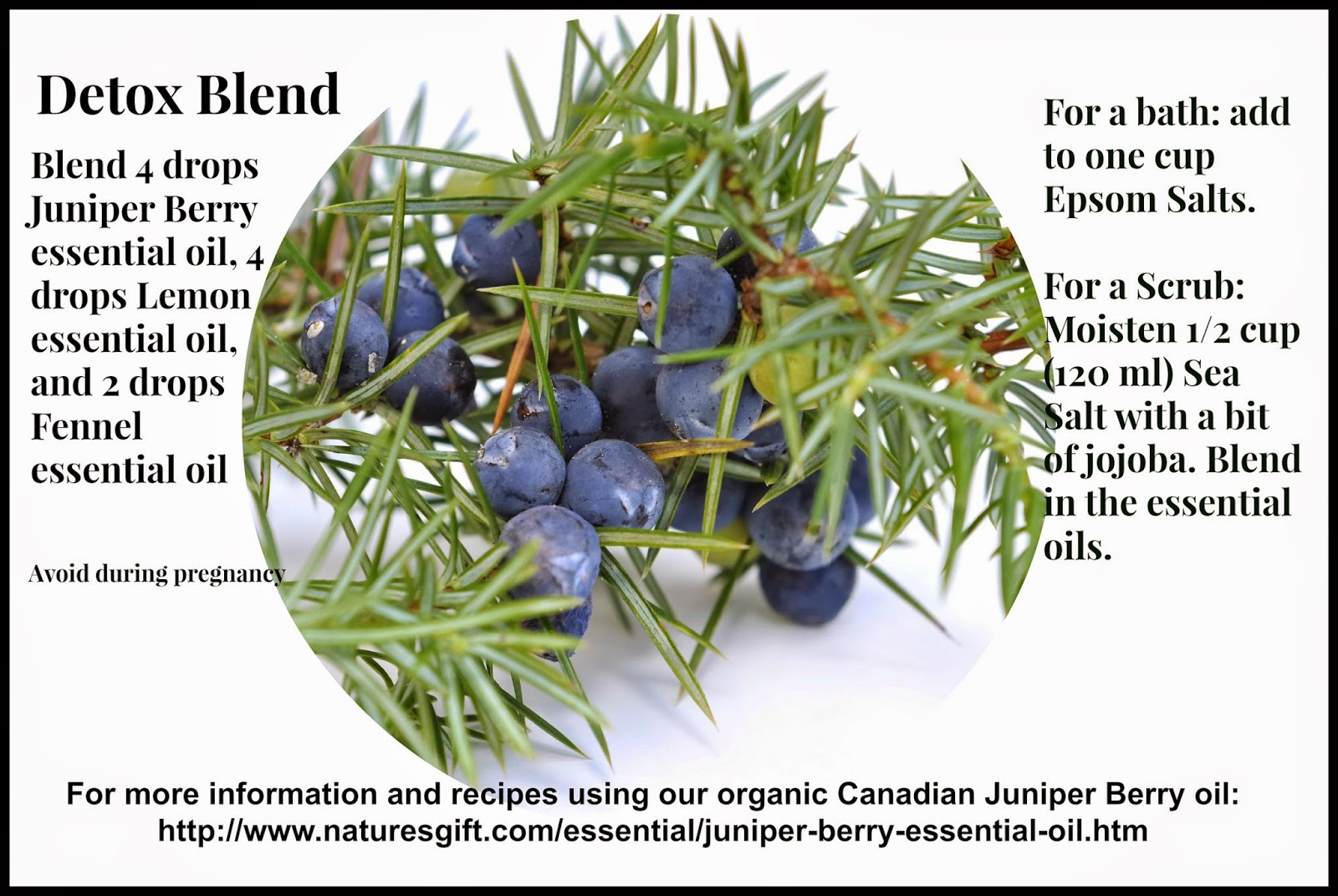 aromatherapy at Nature's Gift: Juniper Berry Oil