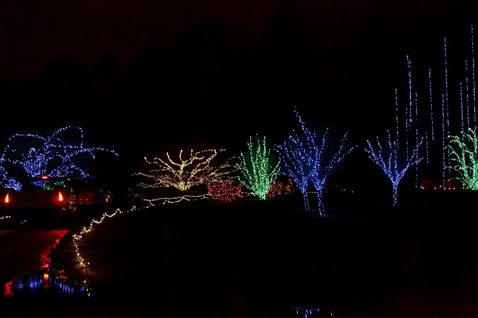Kamie & Roopie: Polar Express Christmas Lights at Norfolk Botanical ...