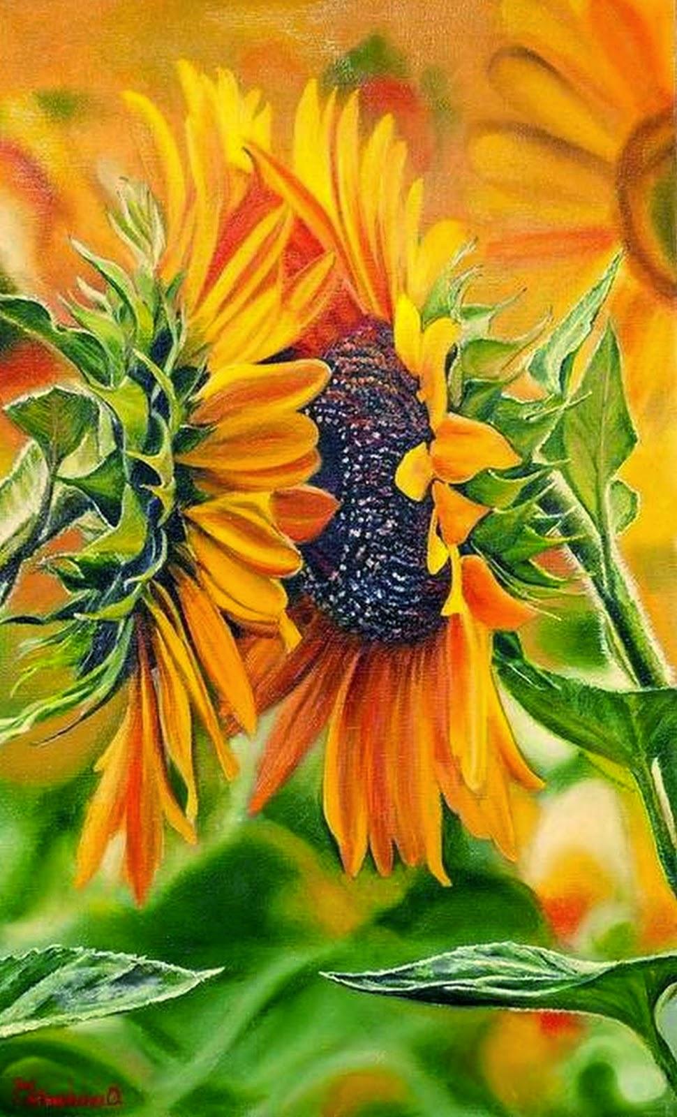 Cuadros pinturas oleos fotos flores en plantas - Fotos y cuadros ...