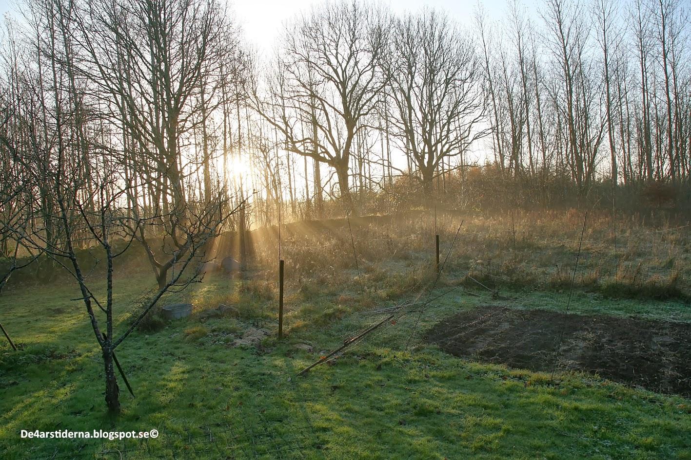 De 4 årstiderna: staket och murar