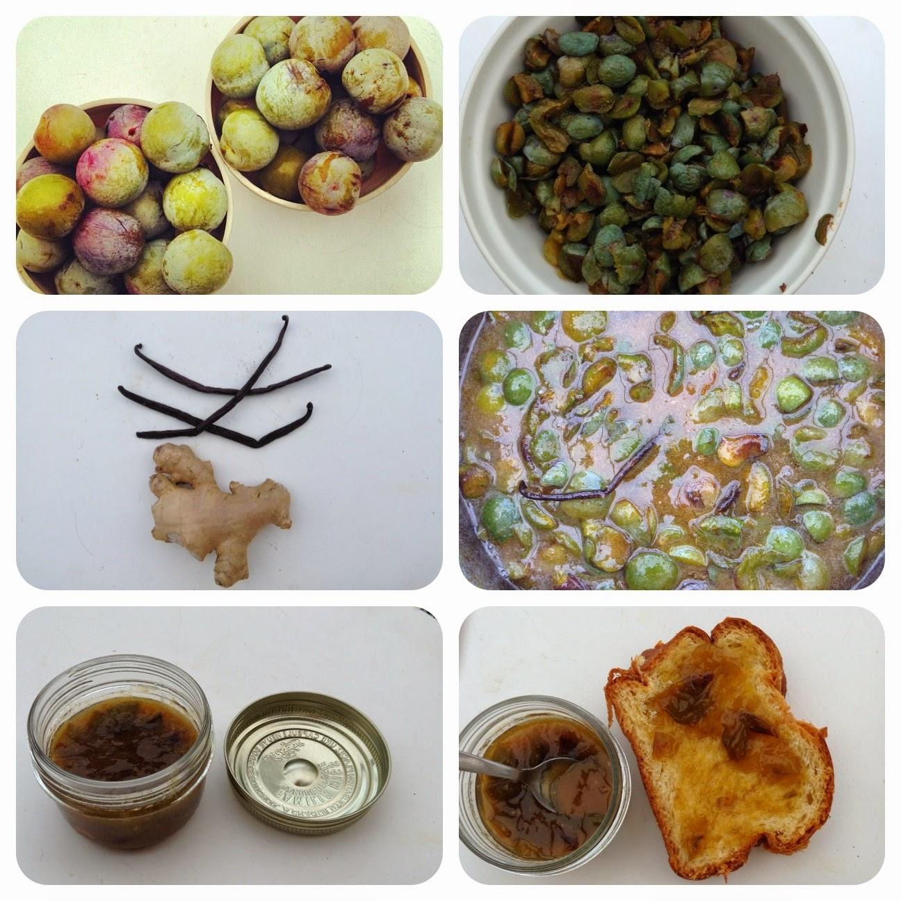 recette confiture de prunes au gingembre et à la vanille