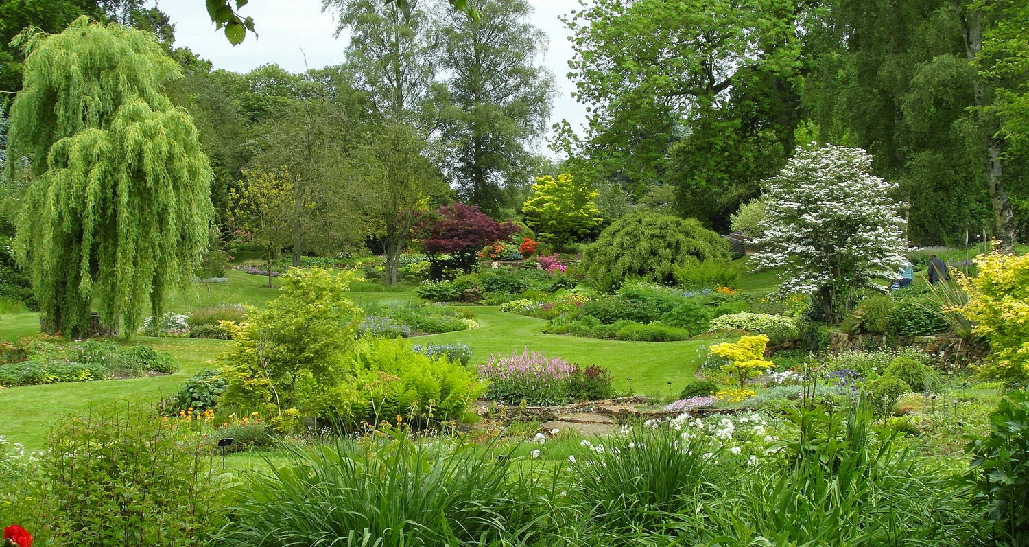 Garden fancy island beds and bressingham gardens for Island garden