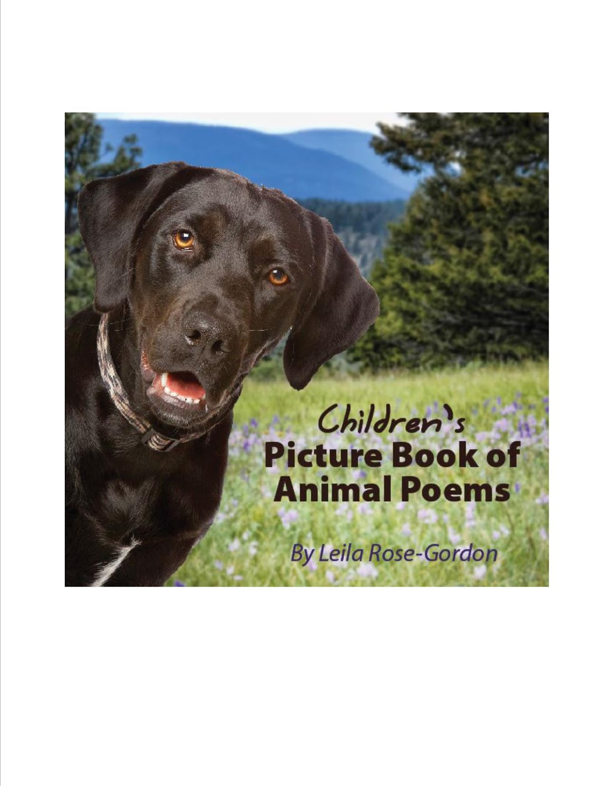 Children's Picture Book of Animal Poems