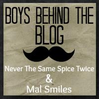 Boys Behind the Blog button