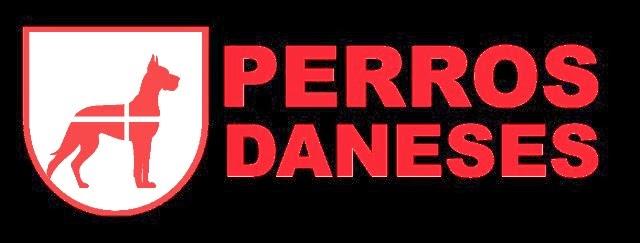 PERROS DANESES
