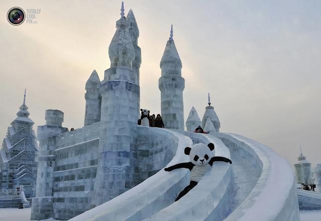 Аниматор в костюме панды съезжает с ледяной горки на Харбинском международном фестивале льда и снега в Харбине, Китай. (Sheng Li/REUTERS)