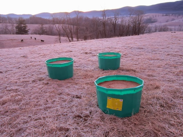 riomax and cattle lick tubs