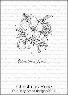 Our Daily Bread designs Christmas Rose Set