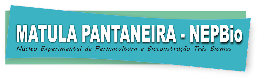 MATULA PANTANEIRA