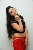 Young Actress Merina Photos at Veerudokkade audio-thumbnail-15