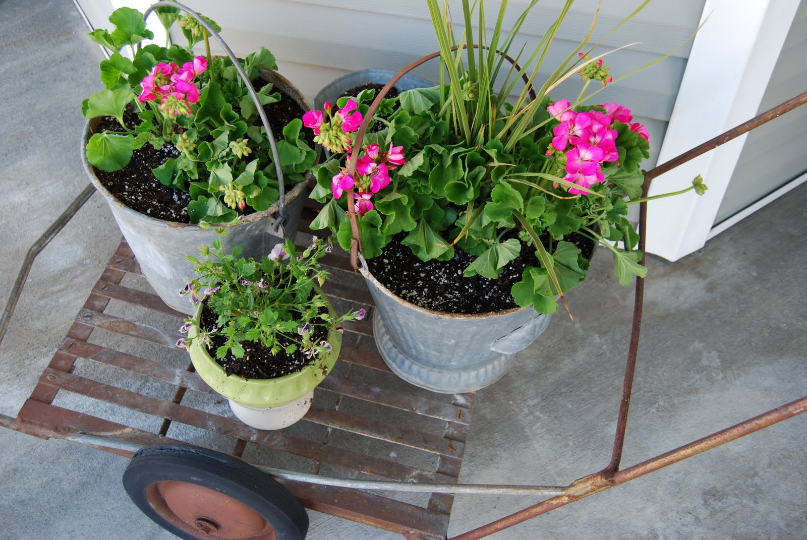 Chikkaboom design picture perfect porch ideas wire baskets found in the kitchen section of a second hand store work great for planters and hanging baskets workwithnaturefo