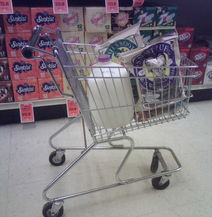 Shopping Cart in Aisle