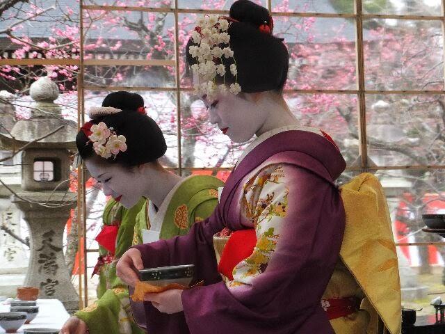 かんざしも梅の花の舞妓さん。