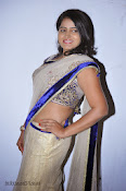 Actress Tanusha Photos in Saree at Present Love Audio-thumbnail-10