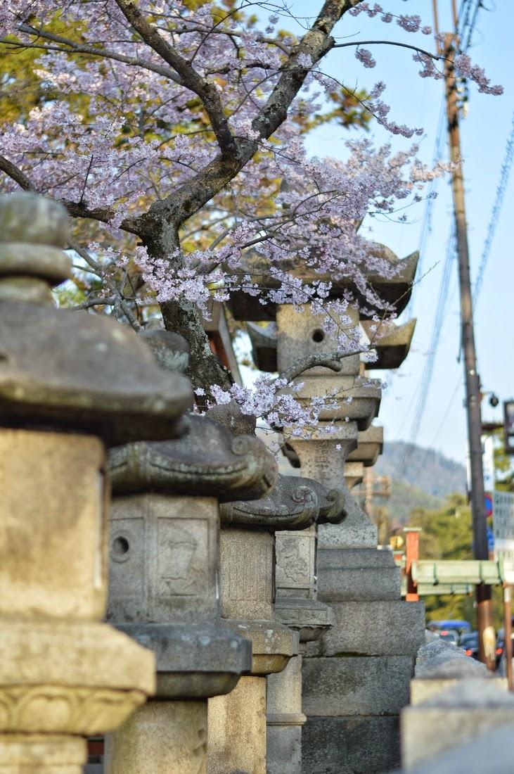 Jalan-jalan ke Osaka - Bahagian 5