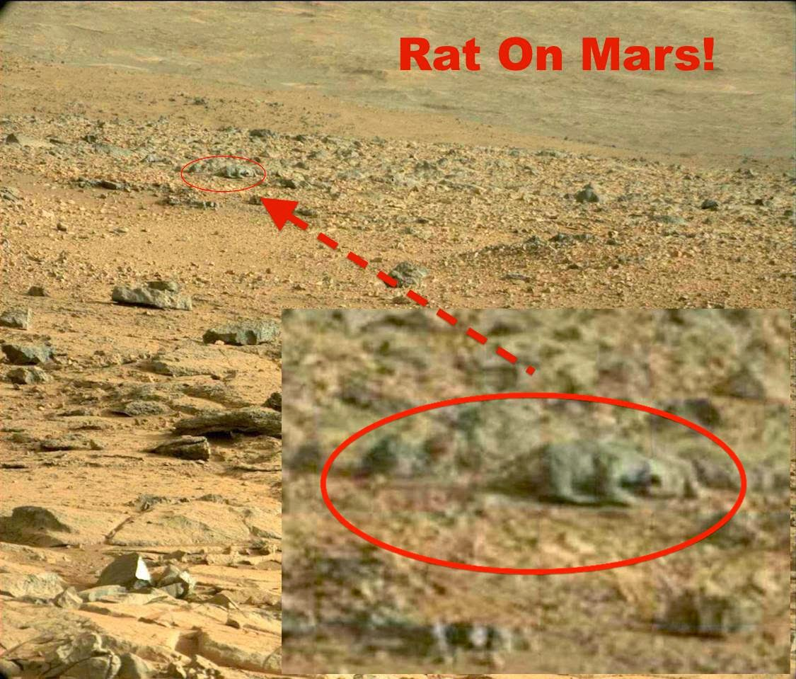 usa today on planet mars - photo #30