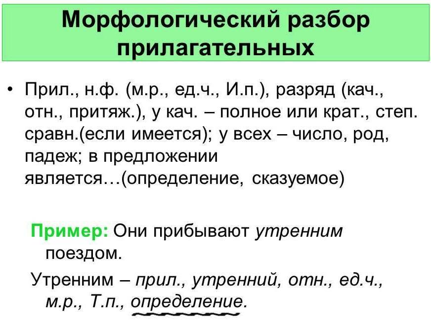 Схема морфологического разбора прилагательного 5 класс