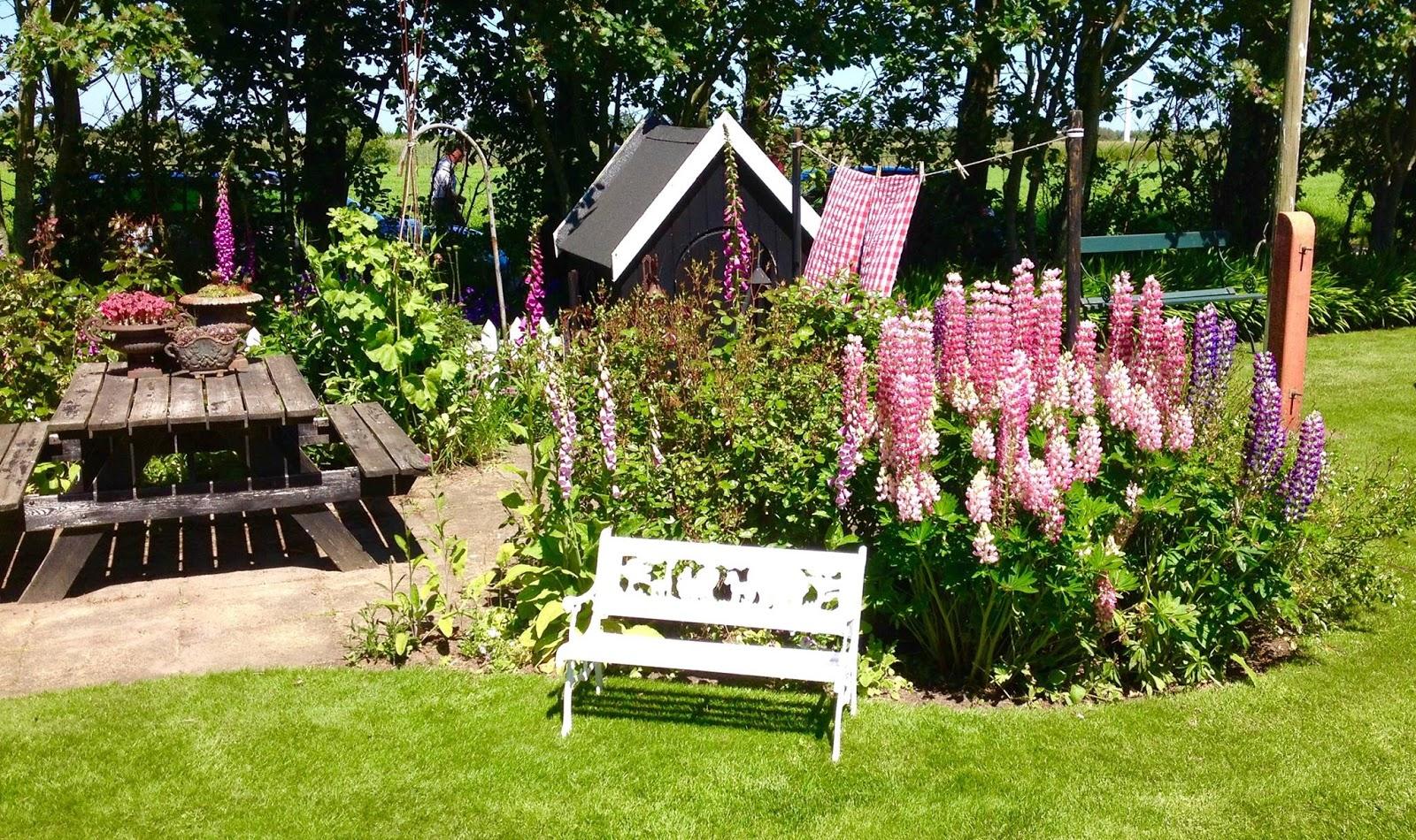 Kirstens Have : Besøg i Fru Pedersens have.