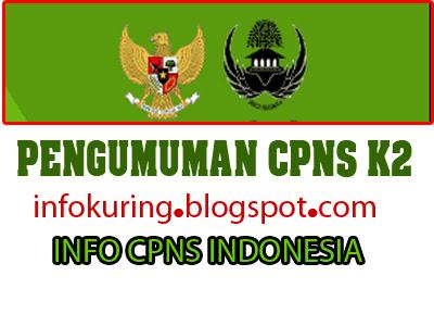 Hasil Tast CPNS K2  2013