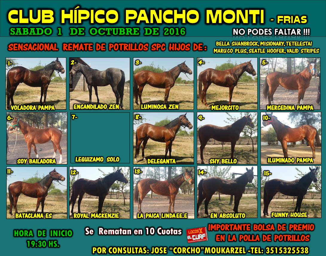 01-10-16-HIP. FRIAS-REMATE DE P.